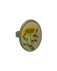 ring droogbloem geel