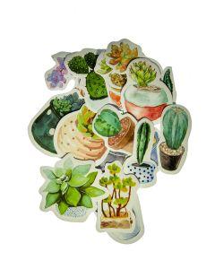 doosje stickers vetplant